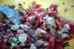 molho campagnola com cebola, atum e tomate