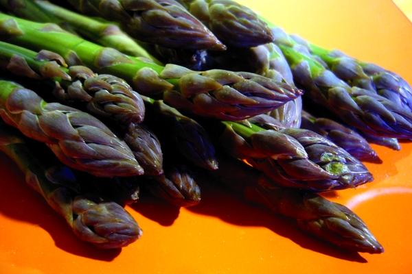 green asparagus of Altedo IGP