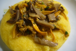 Polenta with mixed mushrooms